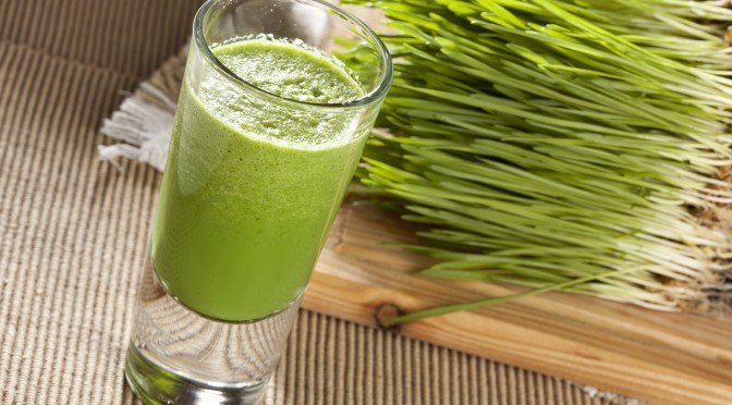 Healing Benefits of Wheatgrass