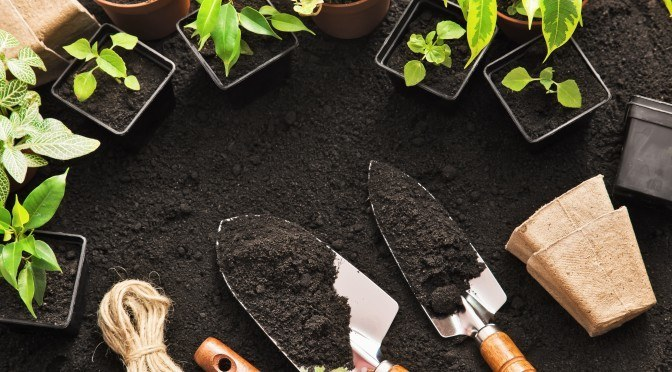 8 Ways To Make Healthy Organic Soil For Your Garden
