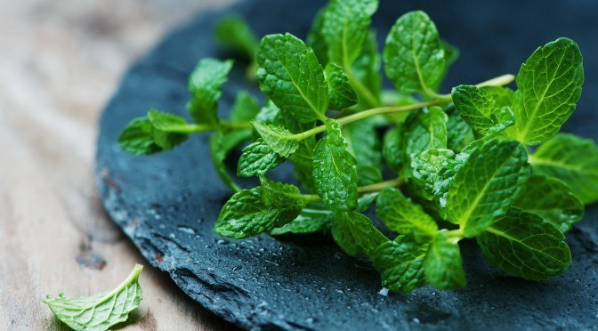 6 Herbs that Enhance Digestive Health
