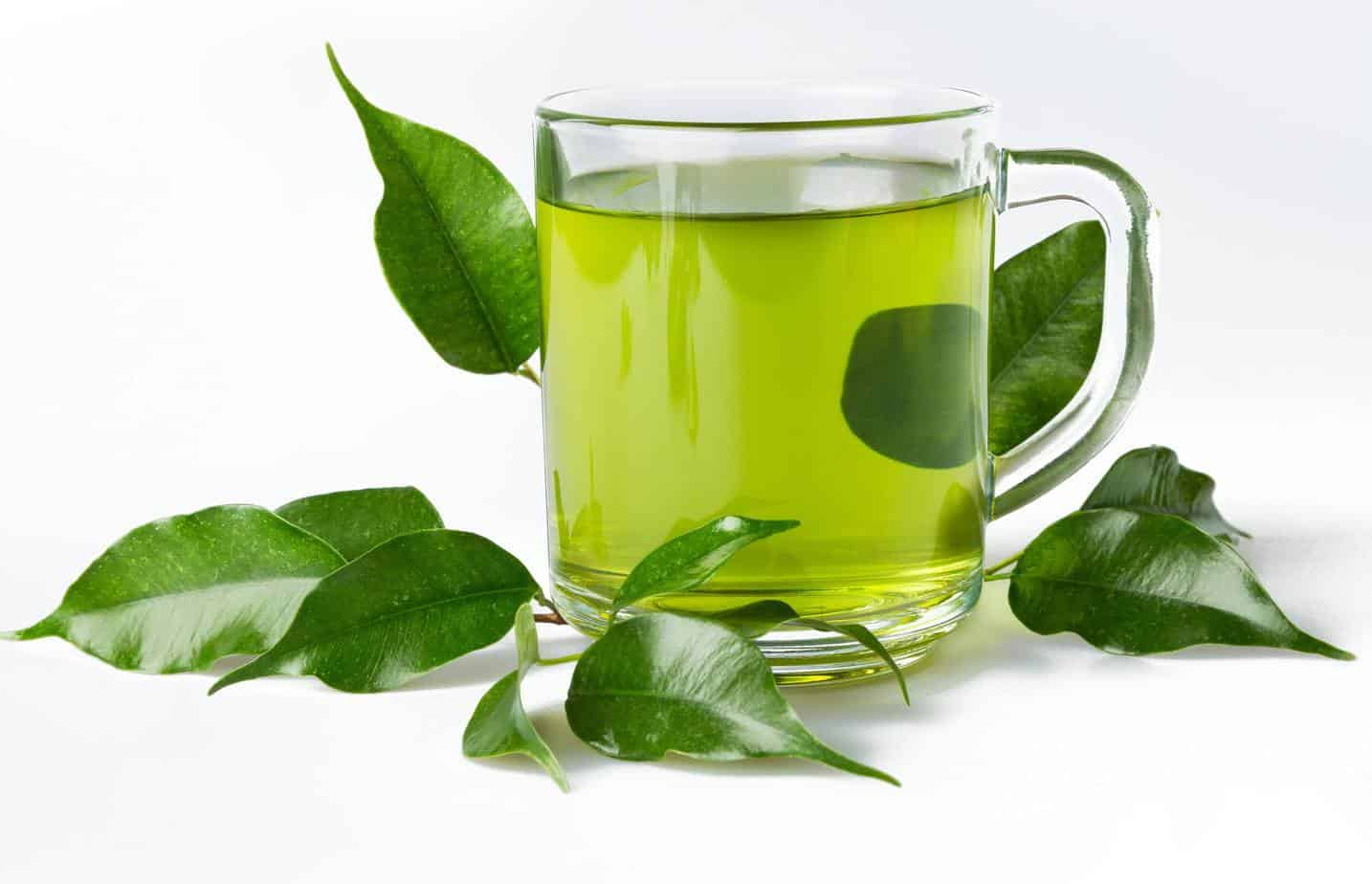 Diet Can You Drink Green Tea