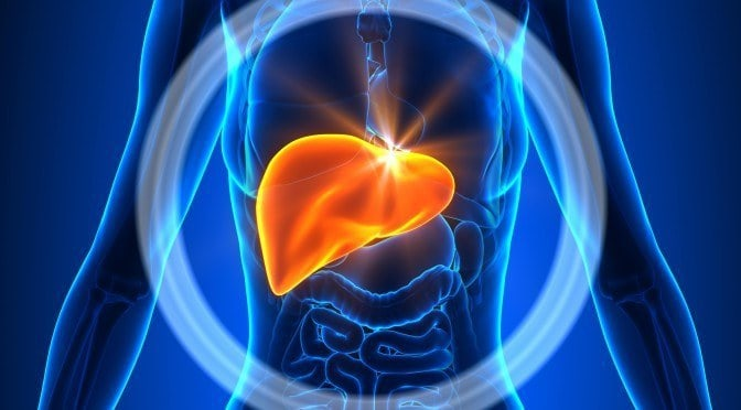 Top 4 Ways to Improve Liver Function