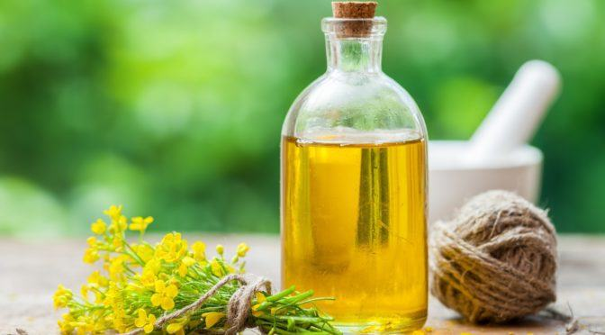 5 Reasons To Never Use Canola Oil Even If It's Organic